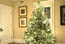 Begini Cara Merawat Pohon Natal di dalam Rumah