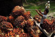 Bakrie Plantations Akan Pangkas Utang pada Tahun Depan