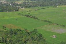 Kepala Daerah Diminta Melindungi Lahan Pertanian Produktif