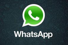 WhatsApp Tumbang,