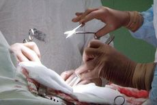 Tahun Ini, China Stop Gunakan Organ Tubuh Tahanan untuk Transplantasi