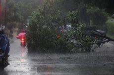 Hujan Angin, Ini Titik Genangan dan Pohon Tumbang di Jakarta