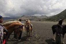 BNPB Antisipasi Meningkatnya Aktivitas Gunung Bromo