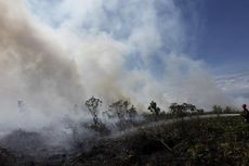 Titik Api Terlihat di Hutan Sumatera dan Kalimantan Tengah