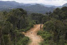 Kisah Empat Hari Tersesat di Pedalaman Rimba Perbatasan Indonesia-Malaysia