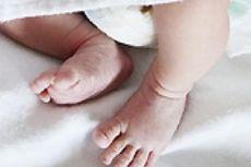 Saat Bersihkan Sampah, PPSU Temukan Mayat Bayi Laki-laki Terapung di Pinggir Kali Cideng