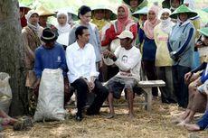Jokowi Tugaskan BUMN Bangun 'Cold Storage' untuk Bantu Petani