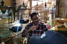 Djarot Akan Tugaskan PD Pasar Jaya Revitalisasi Pasar Burung Pramuka