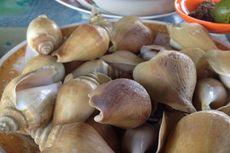 Seperti Siput, Ini Kuliner Laut dari Kepulauan Riau