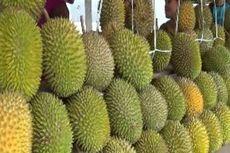 Berwisata Buah di Kampung Lapak Durian Binuang