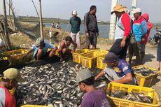 Daya Beli Pembudidaya Ikan Terus Naik di 2019