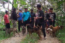 Dua Hari Diburu, Babi Hutan yang Tewaskan Warga Tak Juga Ditemukan