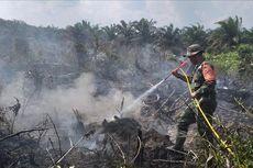 Kabut Asap akibat Kebakaran Hutan dan Lahan Selimuti Pekanbaru