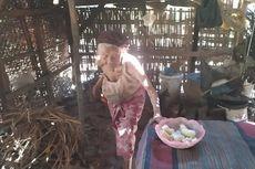 Kisah Nenek Rabina, Tinggal di Gubuk Reot Makan dan Tidur Bersama 8 Kucing