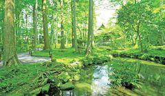 Rute Perjalanan Kyoto: Menikmati Indahnya Kuil Sanzen-in dan Kuliner