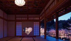 Terbaru di Jepang, Pemandangan Sakura dari Jendela Berbentuk Hati