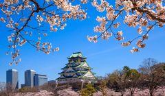 "Mau Liburan Gratis ke Jepang? Ikuti Kuis ""Ohayo Jepang"" Ini"