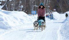 """Banana Boat"" di Tengah Salju? Ini Aktivitas Musim Dingin yang Wajib Coba di Hokkaido"