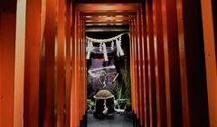 Ide Liburan di Tokyo, Serunya Belajar Jadi Ninja di Ninja Trick House