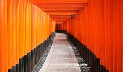 """Catat, """"Itinerary"""" Satu Hari di Area Selatan Kyoto dengan Kansai Thru Pass"""