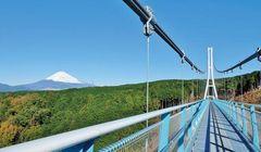 Menikmati Spot Alam dengan Pemandangan Indah Gunung Fuji!