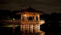 Wah, Malam Hari Kota Nara di Jepang Tampil Memukau dengan Iluminasi