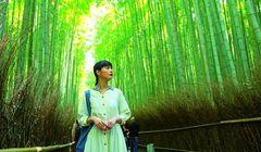 Tur Jalan Kaki Melalui Hutan Bambu Arashimaya di Kyoto