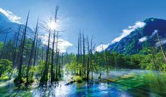Dua Hari Menjelajahi Pegunungan dengan Alam yang Mempesona di Jepang