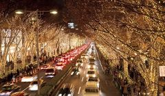 Hiasan Cahaya dari Pijaran Lampu di Kota Omotesando dan Harajuku, Indahnya...