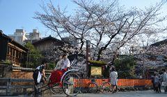 Panduan Jadi Turis yang Baik di Gion Kyoto