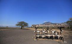 Catat Nih, 3 Destinasi Eksotik di Taman Nasional Baluran