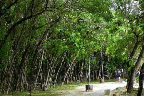 Tanjung Lesung Conservation Park Direncanakan Selesai 2016