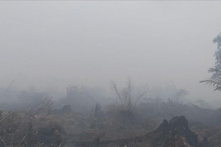 Kondisi bencana kebakaran Hutan dan Lahan di Desa Teluk Bano II, Kecamatan Pekaitan, Kabupaten Rokan Hilir, Riau.