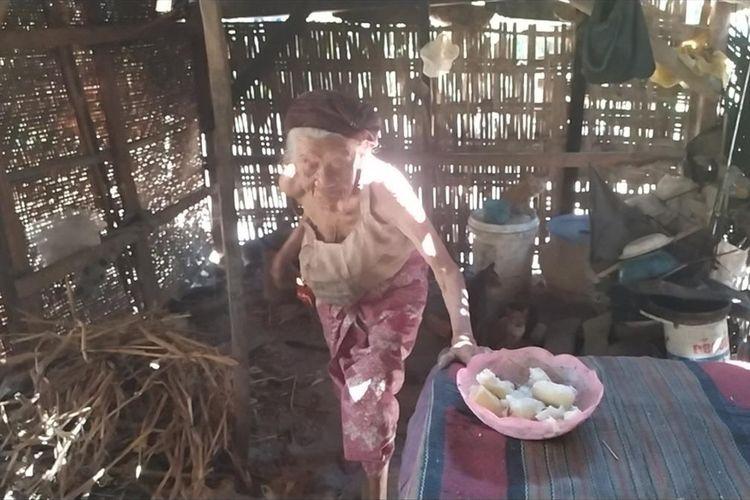 Rabina (92) asal Dusun Bertah, Desa Larangan Luar, Kecamatan Larangan hidup sebatang kara. Ia tinggal di gubuk reot bersama delapan kucing piaraannya.