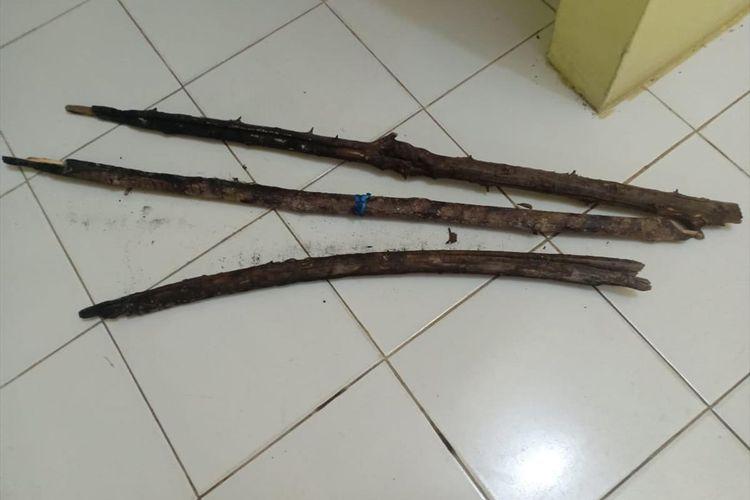 Barang bukti tiga potong kayu bekas terbakar yang diamankan polisi dari lahan yang terbakar milik tersangka PS di Desa Rawa Sekip, Kecamatan Kuala Cenaku, Inhu, Riau, Jumat (12/7/2019). Dok. Polres Inhu