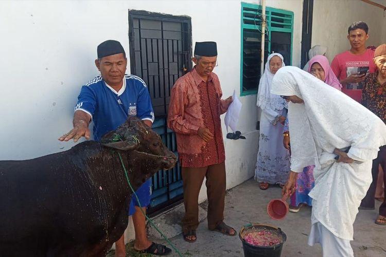Peserta kurban memandikan sapi sebelum disembelih di Masjid Nurul Huda, Padang.
