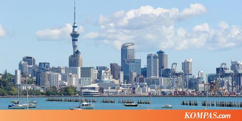 Liburan Ke Selandia Baru Naik Pesawat Apa