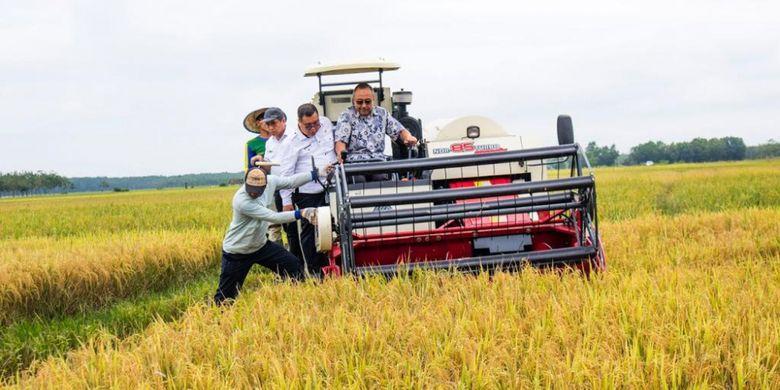 Direktur Jenderal Prasarana dan Sarana Pertanian (PSP) Kementerian Pertanian (Kementan), Pending Dadih Permana sedang mencoba combine harvester, kendaraan panen padi,