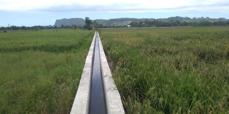 Kementerian Pertanian telah memperbaiki saluran irigasi di Kelompok Tani Jaya di Kelurahan Koya Barat, Distrik Muara Tami, Kota Jayapura, Provinsi Papua.