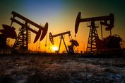 Iran: 3 Anggota OPEC Akan Tolak Peningkatan Pasokan Minyak yang Diajukan Saudi