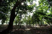 5 Taman yang Cocok untuk Ajak Ibu Piknik