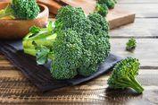 Mengapa Brokoli Tidak Tersaji Dalam Kemasan Kaleng?
