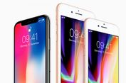 Apple Bakal Perbanyak Produksi iPhone Murah?