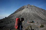 Balai Taman Nasional Merapi Imbau Warga Lapor jika Ada Satwa Keluar Kawasan