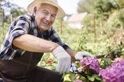 Tak Hanya Olahraga, Berkebun Juga Bisa Buat Umur Panjang