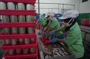 Pasca-temuan Cacing, Pabrik Stop Produksi Sarden Ikan Makarel