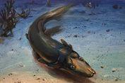 400 Tahun Lalu, Hidup Ikan Dengan Moncong Panjang Mirip Platipus