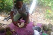 Berburu Durian Buloh Aceh Utara, Serunya Menunggu Jatuh dari Pohon...
