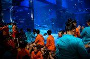 Cara Edukasi Anak agar Merawat Laut Ala Menteri Susi