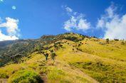 8 Fakta Unik tentang Gunung Sumbing via Bowongso
